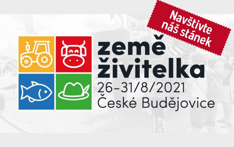 Pozvánka na grilování do Bělčic